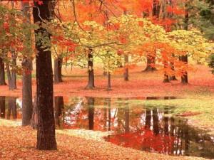 отпуск осенью
